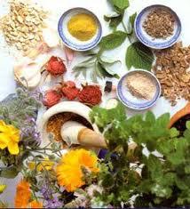 10 herbs that heal